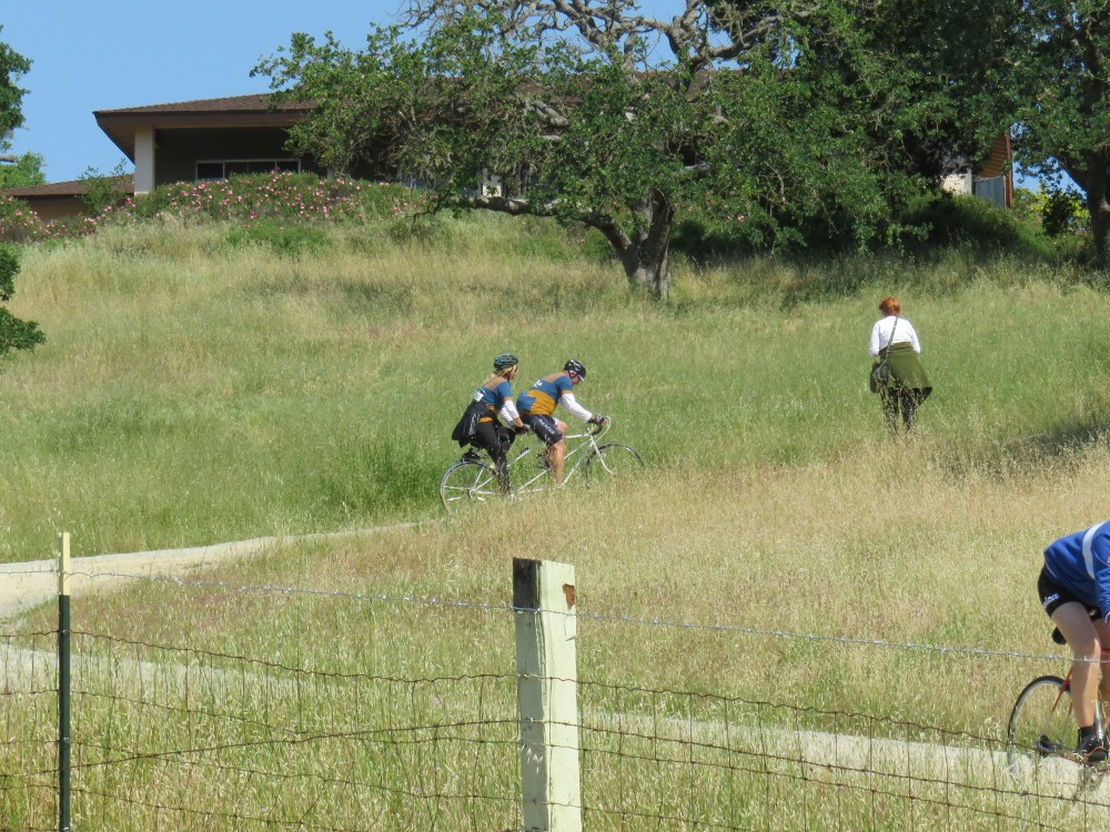 The couple on the tandem made a good attempt at getting up that first hill  at Olea Olive Oil Farm (maybe 20% of the people ride up that hill 7c82c6ac8